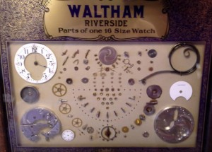 Waltham Parts Size 16 Watch © 2015 Susan C. Fix All Rights Reserved