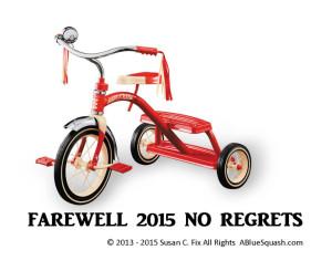 Farewell 2015 No Regrets 12-31-15 © 2013 - 2015 Susan C. Fix All Rights Reserved ABlueSquash.com